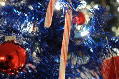 13 Christmas in America b